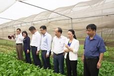 Hà Nội nắm bắt nguyện vọng của người dân, phát huy vai trò làm chủ của nhân dân trong xây dựng nông thôn mới