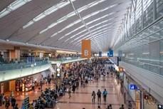 日本或将暂停越南人的新入境许可