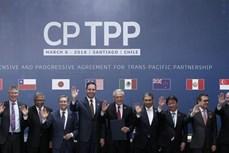 英国正式申请加入CPTPP