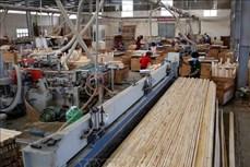 平阳省木制品出口额位居全国首位