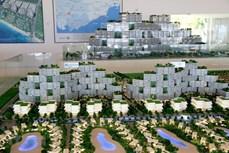 戴维斯酒店: 越南有望发展成为国际休闲旅游目的地
