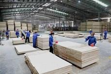 期望越南将成为全球木材供应链