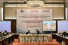 越南与日本合作促进大湄公河次区域能源可持续发展