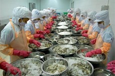 力争至2045年越南跻身世界三大水产品出口国名单