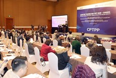 CPTPP协定:为越南与加拿大贸易多样性提供有力支撑