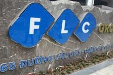 FLC提出2021年税前利润超1.1万亿越盾的目标