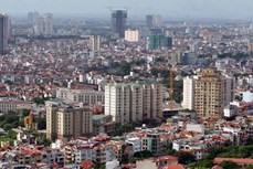 河内市组织开展城市政府模式