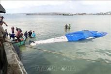 平顺省:将在海上死亡的鲸鱼送上岸埋葬