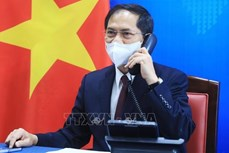 越南外交部长裴青山与美国国务卿布林肯通电话