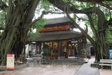 越南劝导宗教界暂停组织人员密集活动