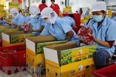 加拿大官员高度评价越南经济的活跃发展