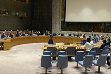 越南与联合国安理会:越南支持不扩散大规模杀伤性武器