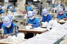 越南中小企业员工敬业度获好评