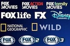 14个外国电视频道将从2021年10月1日起停止在越南提供付费电视转播服务