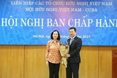 越南国会对外委员会主任武海河当选为2021-2025年阶段越古友好协会主席