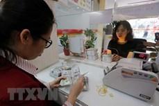 10月14日上午越南国内黄金价格上涨20万越盾