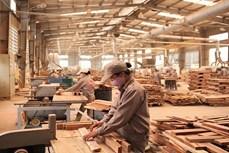 越南木材加工与出口产业力争实现出口额达120亿美元的目标