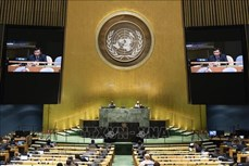 越南呼吁海地各方增进对话 寻求全面解决方案