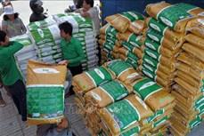 联合国粮农组织愿意协助柬埔寨确保疫情期间粮食供应充足
