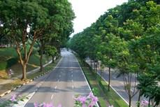 河内市集中精力开展一系列保护环境的措施