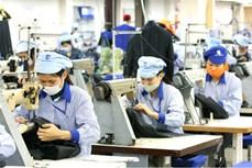 经济合作是越南与阿根廷关系中的亮点