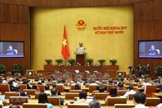 越南国会下周继续开展专题询问和回答询问和讨论人事工作