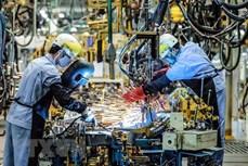 平阳省制定辅助工业长期发展战略