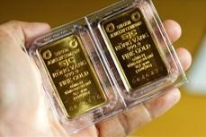 19日上午越南国内市场黄金价格每两上涨56万越盾