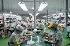 2020年越南对中国出口额达489亿美元