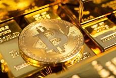 26日上午越南国内市场黄金价格为每两5600万越盾