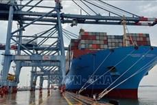 2021年前2月越南各港口进出国际船舶数量同比下降6%