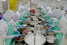 今年前2个月坚江省出口额达1.03亿多美元