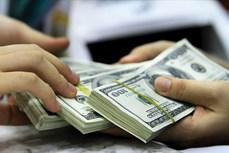 今日越盾对美元汇率中间价保持不变