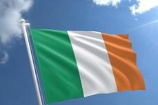 越南领导人致电祝贺爱尔兰国庆日