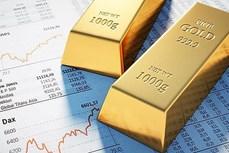 今日上午越南国内市场黄金价格每两上涨20万越盾