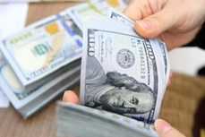 今日上午越盾对美元汇率中间价持续下调