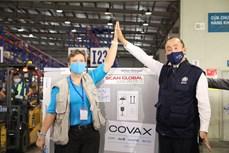 由COVAX提供的81.1万剂新冠疫苗已运抵越南河内