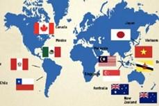 菲律宾有意加入《全面与进步跨太平洋伙伴关系协定》