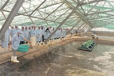 将薄辽省建设成为全国虾类行业发展中心