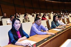越南第十四届国会第十一次会议:开始国家主席和政府总理选举流程