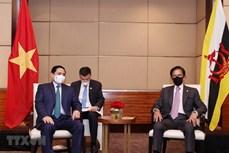 越南政府总理范明政会见文莱苏丹哈桑纳尔