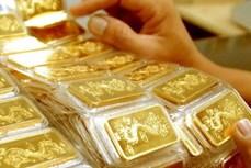 28日上午越南国内市场黄金价格每两接近5600万越盾
