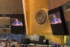 越南出色履行联合国安理会轮值主席国职责