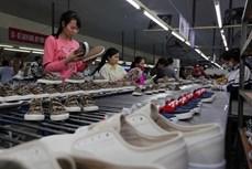 比利时将EVFTA视为加强与越南合作的机会