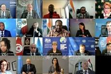 越南与联合国安理会:越南支持对伊斯兰国罪行进行调查和追究责任