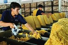 越南橡胶出口额猛增