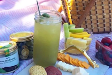 美国向Vinamit甘蔗汁冷干技术颁发专利证书