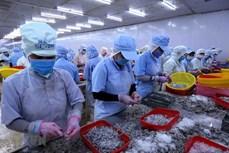 尽管疫情围攻 越南水产品出口仍迎来许多机会