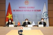 越南出席国际和平与安全常务委员会会议