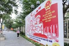 胡志明市少数民族同胞喜迎选举日
